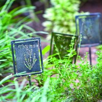 FCY_Memory Garden Spice Signs SM_4C