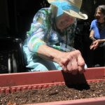 Charlene is so happy planting seeds with Intern Jessica. Jessica has a garden group that is very successful and engaging for our residents.